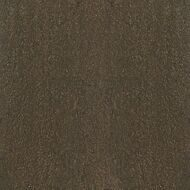 Celesta brown PG 02 450х450